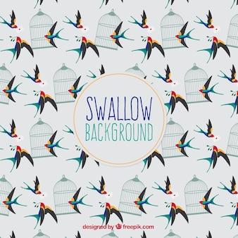 Schattig swallow achtergrond