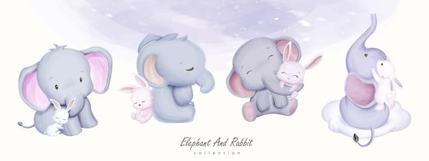 Schattige babyolifant en konijn collectie set illustratie