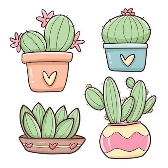 Schattige cactussen
