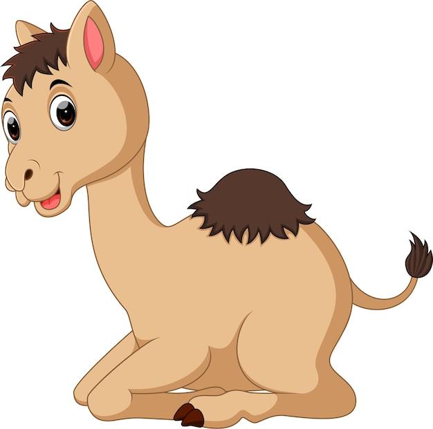 Schattige camel cartoon