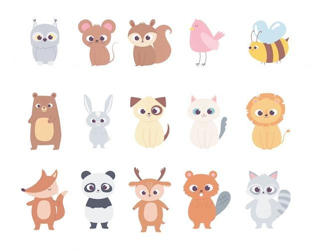 Schattige cartoon dieren kleine karakters uil muis eekhoorn herten vogel bee beer kat hond leeuw