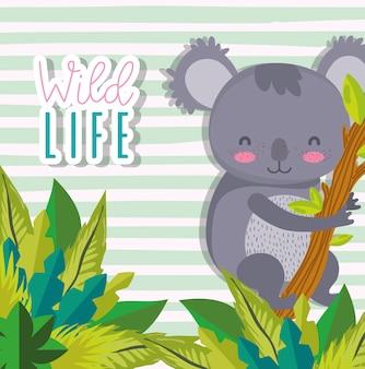 Schattige cartoons van koala's in het wild