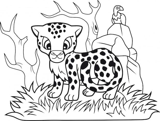Schattige cheetah
