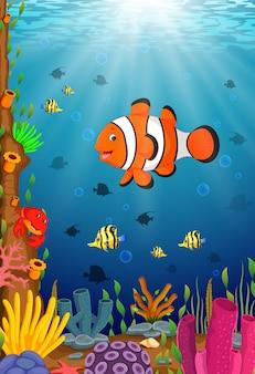 Schattige clown vis cartoon in de zee