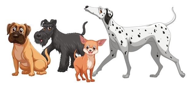 Schattige dieren hond groep geïsoleerd