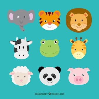 Schattige dieren hoofden