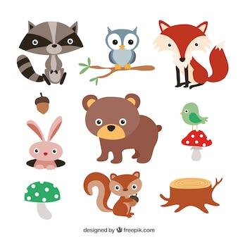 Schattige dieren in het bos