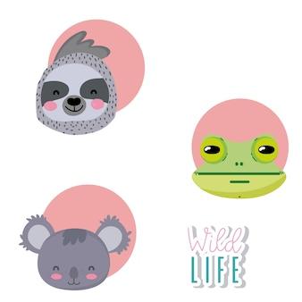 Schattige dieren in het wild cartoon ronden pictogrammen