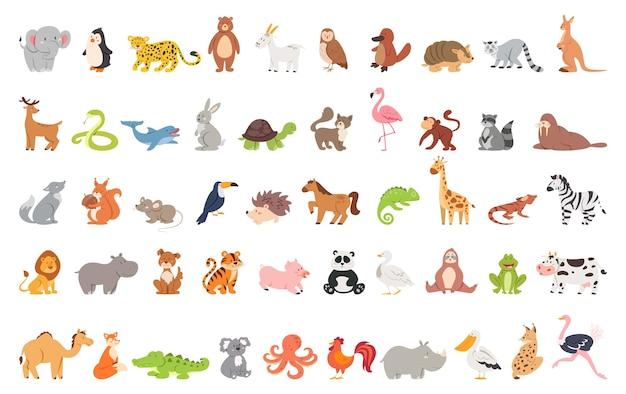 Schattige dieren set met boerderij en wild karakter. kat en leeuw, olifant en aap. zoo collectie.