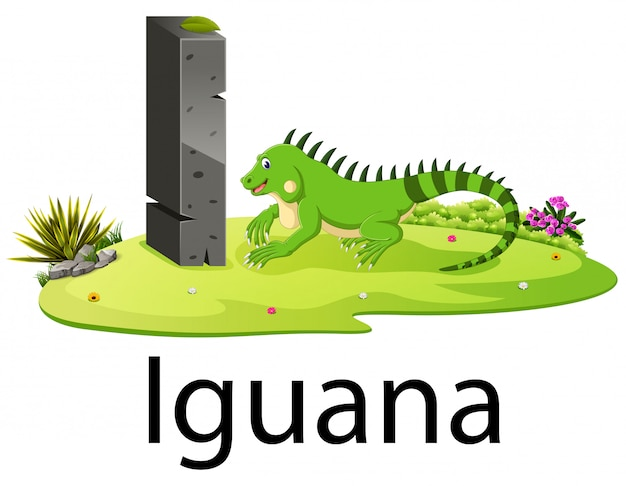 Schattige dierentuin dierlijke alfabet i voor iguana met echte dieren