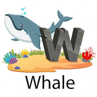 Schattige dierentuin dierlijke alfabet w voor walvis met de goede animatie