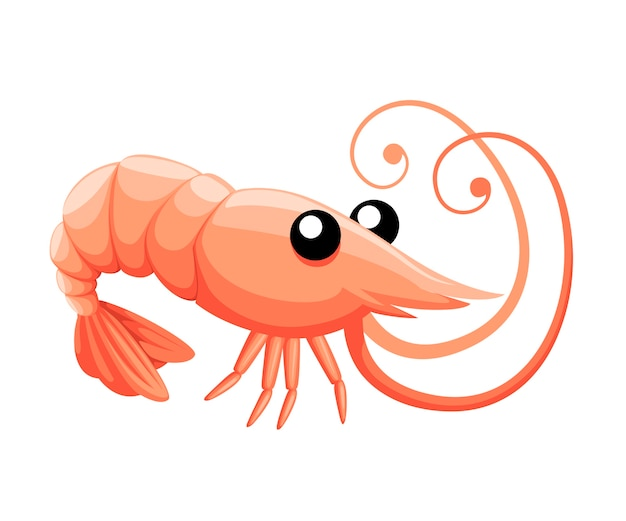 Schattige garnalen. cartoon dier karakter ontwerp