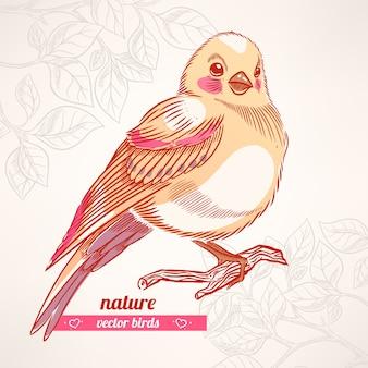 Schattige gele vogel