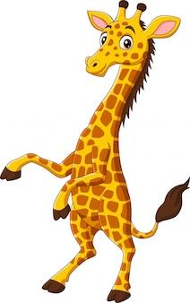 Schattige giraf cartoon geïsoleerd op een witte achtergrond