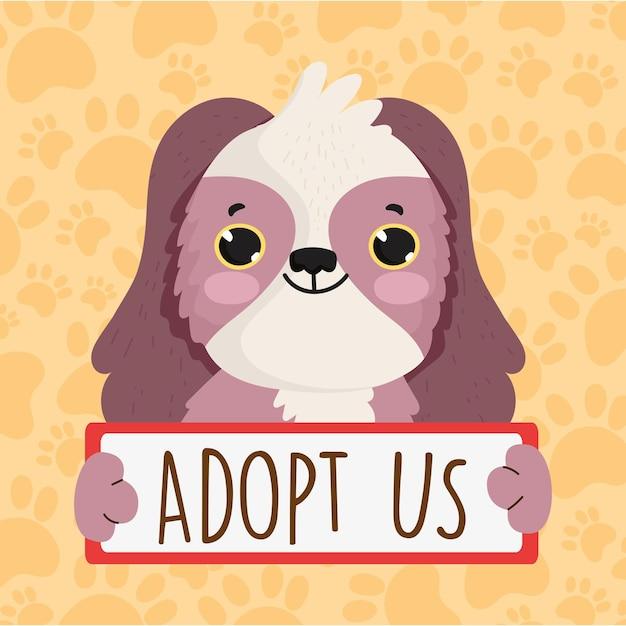 Schattige hond adopteert ons