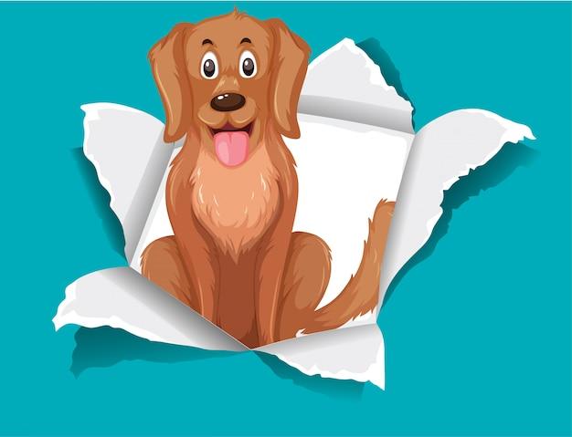 Schattige hond op blauw papier