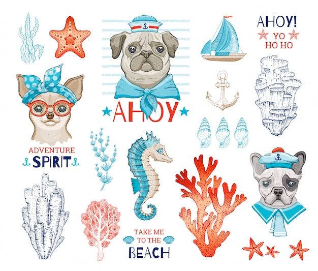 Schattige hond zeilers met cartoon schets zee-element. pug, chihuahua, franse bulldog grappige puppy's.
