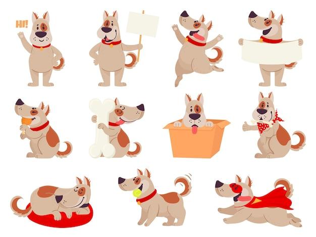 Schattige honden in verschillende acties
