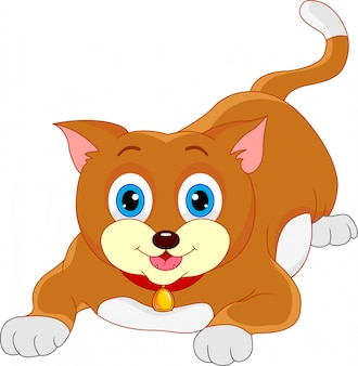 Schattige kat cartoon
