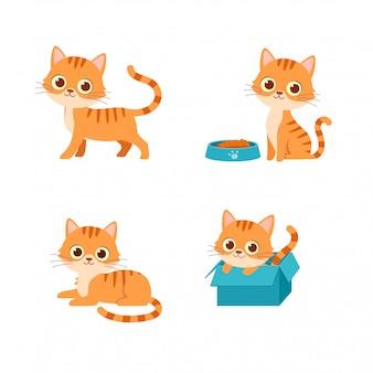 Schattige kat gezelschapsdier spelen pose stijlenset bundel