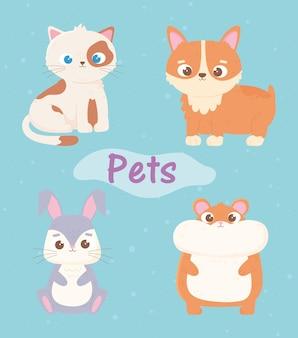 Schattige kat hond hamster en konijn huisdieren tekenfilm dieren illustratie