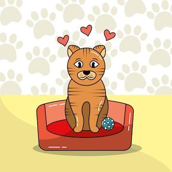 Schattige kat zitten op bed huisdier met bal en poten achtergrond