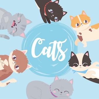 Schattige katten achtergrond