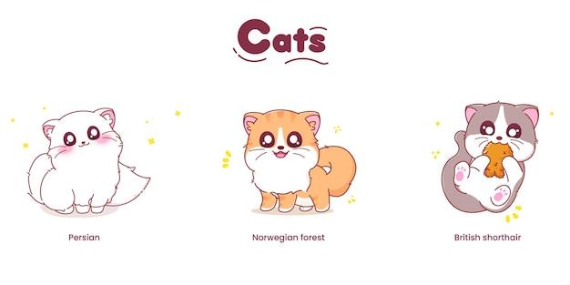 Schattige kattenkarakters met verschillende rassen vectorillustratie