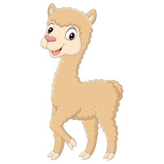 Schattige kleine alpaca cartoon afbeelding