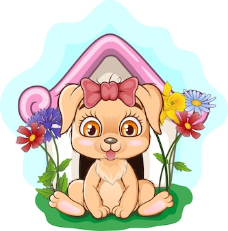 Schattige kleine hond zit in zijn hondenhok