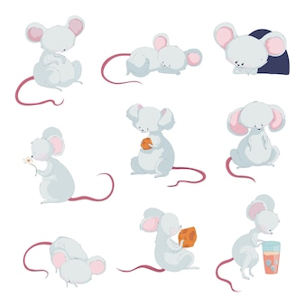 Schattige kleine muizen in verschillende situaties
