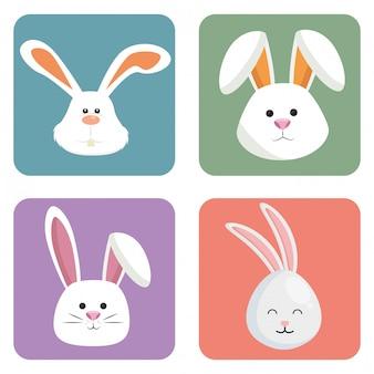 Schattige konijnen zetten hoofden