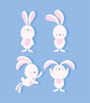 Schattige konijntjes cartoon dieren zoete vector ontwerp en illustratie