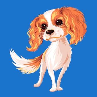 Schattige lachende hond cavalier king charles spaniel ras