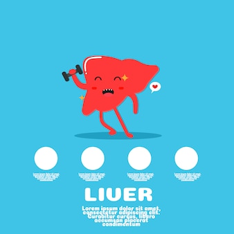 Schattige lever cartoon vector.human orgel concept