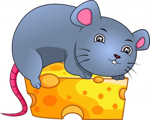 Schattige muis en kaas