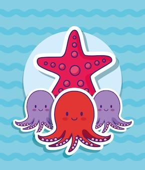 Schattige octopus en zeester