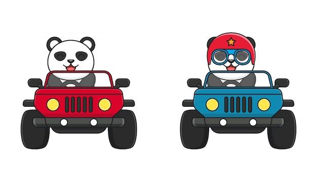 Schattige panda ride a car