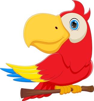 Schattige papegaai cartoon op witte achtergrond