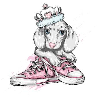 Schattige puppy in een kroon en gymschoenen.