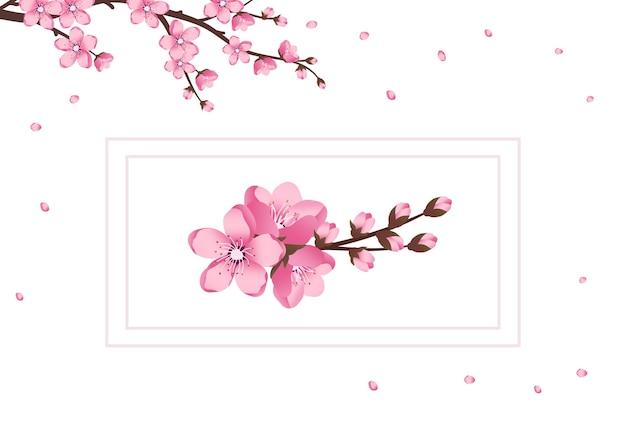 Schattige sakura bloemen icon set de kersentakken hebben gebloeid lente roze bloeiende compositie met ...