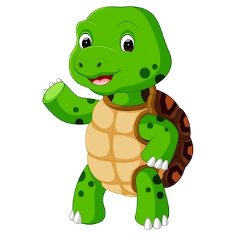 Schattige schildpad cartoon