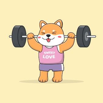 Schattige shiba inu hond tillen gewichten