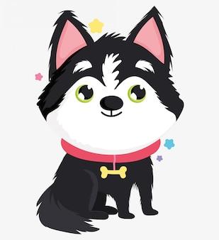 Schattige siberische husky hond binnenlandse cartoon dier, huisdieren illustratie