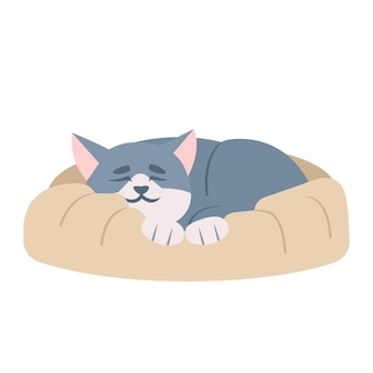 Schattige slapende kat semi platte rgb kleur vectorillustratie. schattige kitten dutje doen, dutten kitty geïsoleerde stripfiguur op witte achtergrond. katachtige hygiëne. huisdier liggend op huisdier bed