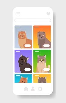 Schattige verschillende katten pluizige schattige cartoon dieren binnenlandse kitty huis huisdieren website of online shop smartphone scherm mobiele app kopie ruimte portret verticaal