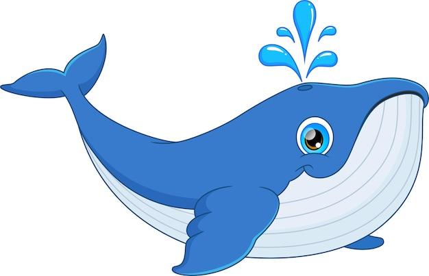 Schattige walvis cartoon