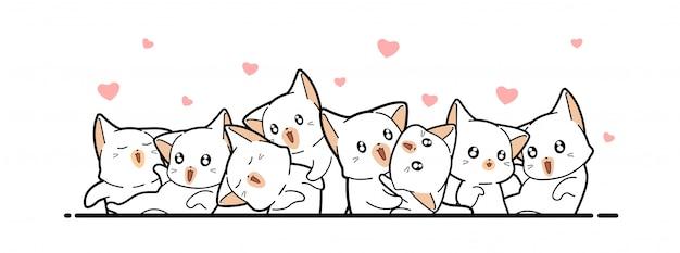 Schattige witte katten