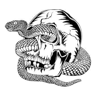 Schedel met adder slang