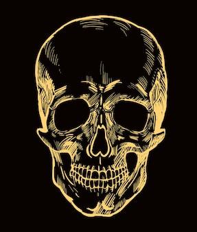 Schedel vector hand getrokken ontwerp gouden realistische schedel geïsoleerd op een witte achtergrond vector